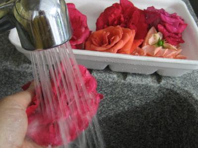 Vinaigre de roses - 1.1