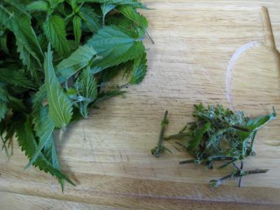Velouté d'orties aux légumes - 1.1