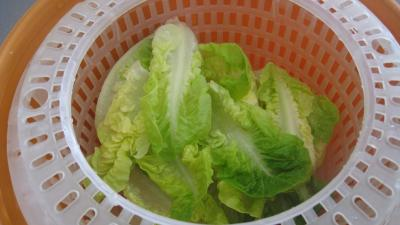 Salade Argenteuil - 5.2