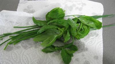 Velouté de légumes - 3.3