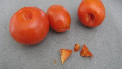 Purée d'aubergines et confit d'oignons et de tomates - 3.2