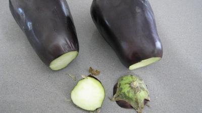 Purée d'aubergines et confit d'oignons et de tomates - 3.4