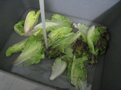 Chou-fleur en salade - 3.1