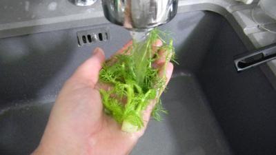Lieu noir sauté aux pâtes et aux légumes - 2.2