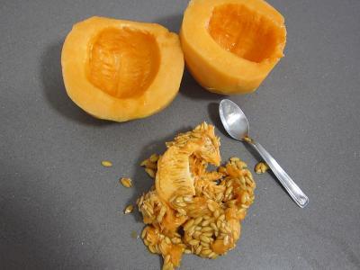 Macédoine de melon et pastèque au Porto - 1.2