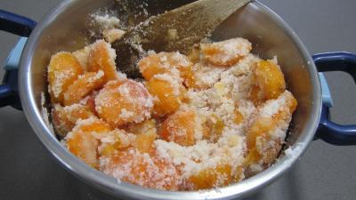 Confiture d'abricots au parfum de noix de coco - 2.1
