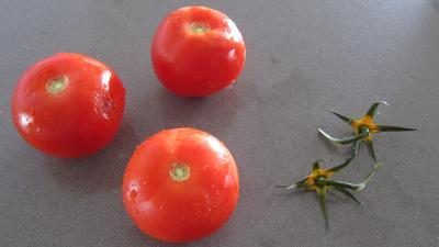 Crostinis d'aubergines et son concassé de boeuf façon Italienne - 3.2